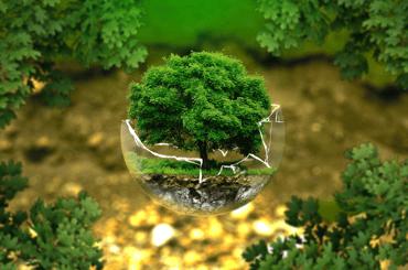 Sustainability Digital Marketing
